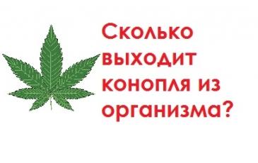 Через сколько выветривается марихуана (трава, анаша, конопля) из крови?